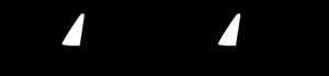 reel-caiman