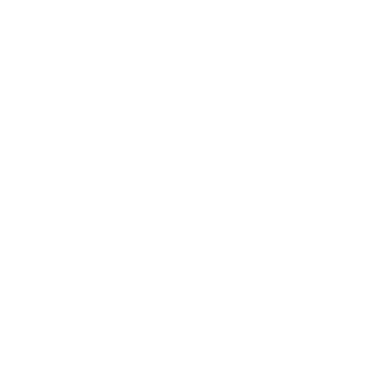 2-speed-system-w